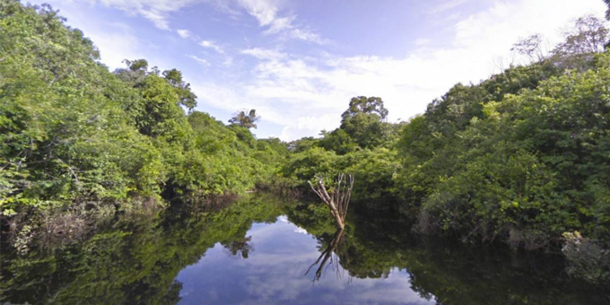 Ahora podrás ver la Amazonía en primera persona con Google Street View