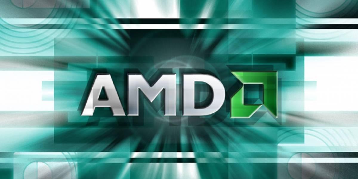 """Para AMD, sólo Android, Linux y Windows """"tienen sentido"""""""