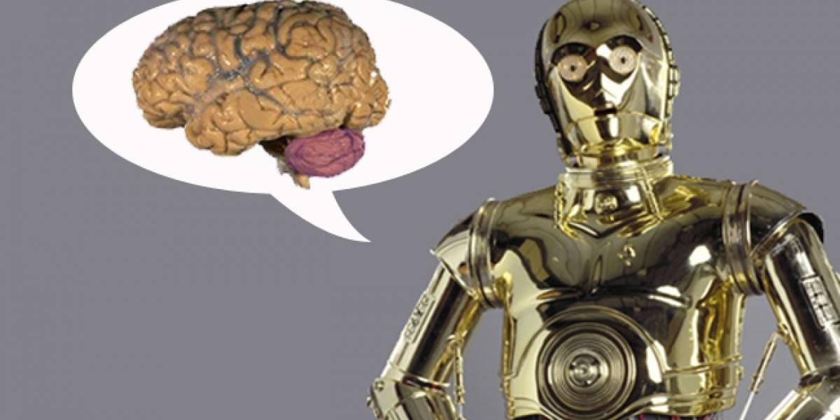 Diseñan un cerebelo artificial para que los robots imiten la forma humana de manipular objetos
