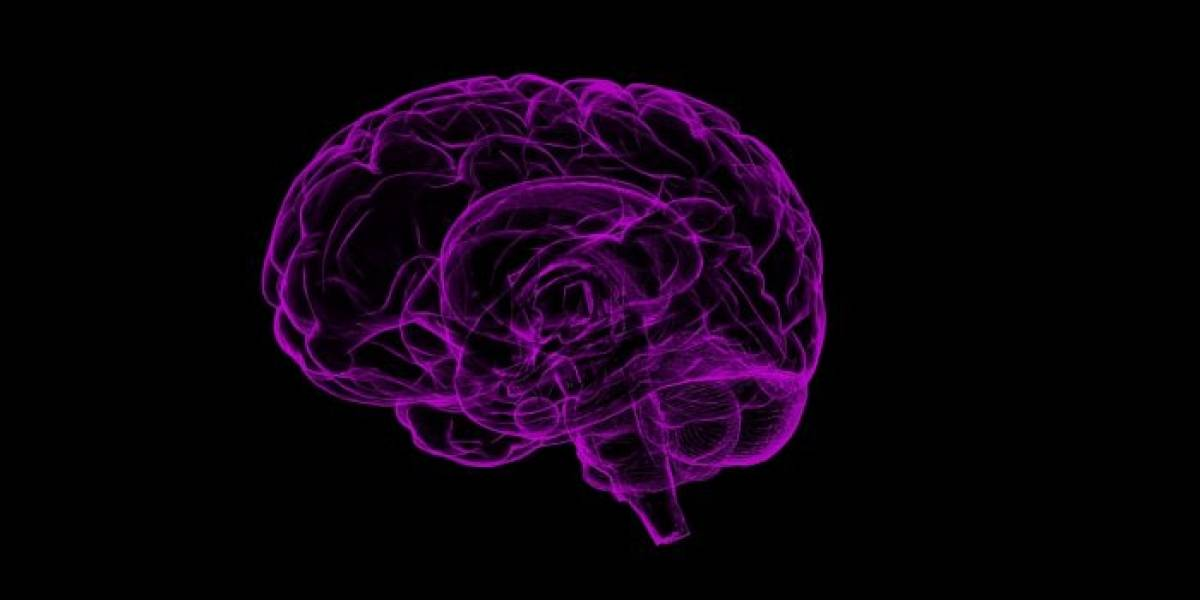 Tu cerebro tiene un 'botón para borrar' y así puedes usarlo