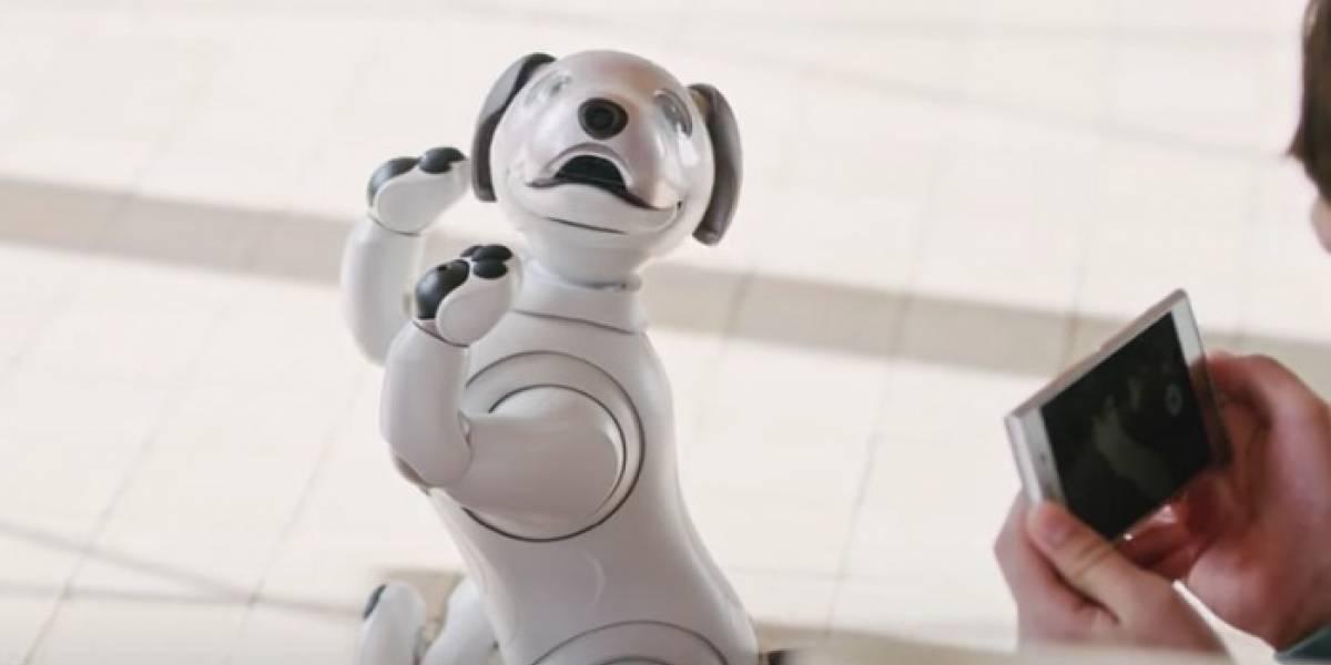 Aibo, el perro robot se agotó en preventa