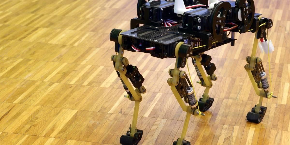 Crean robot que corre como un gato