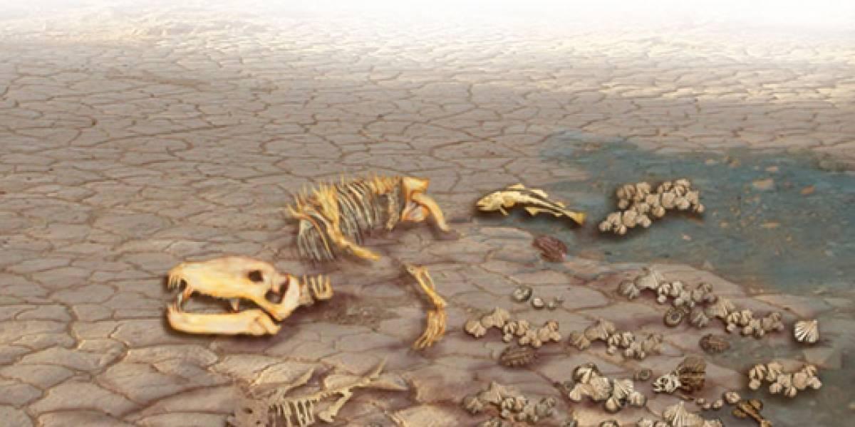 Científicos tratan de determinar si la vida en la Tierra se está extinguiendo