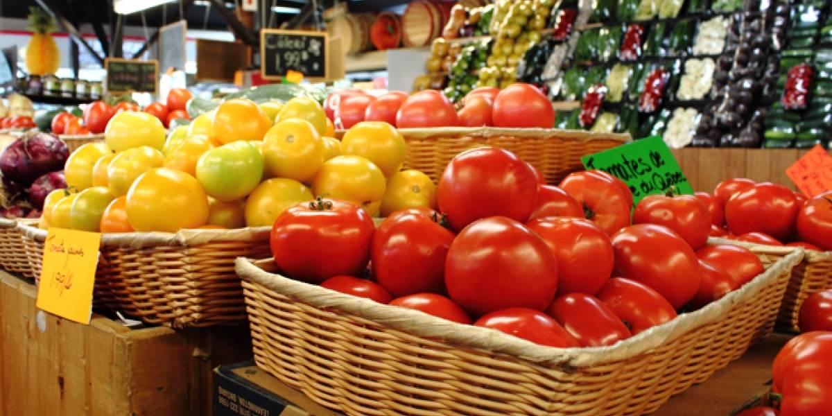Científicos españoles usan luz ultravioleta para desinfectar las hortalizas