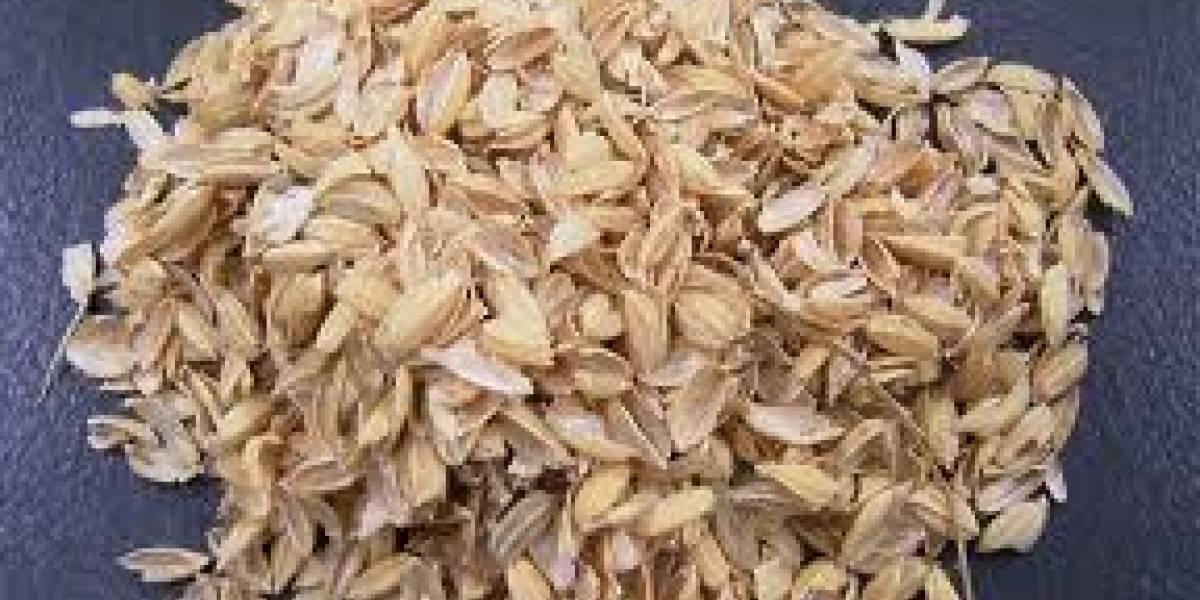Logran extraer silicio apto para baterías de la cáscara del arroz