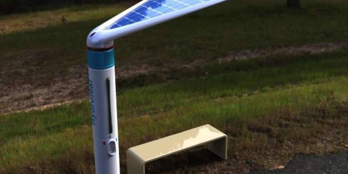 Hydroleaf: un paradero de bus que purifica agua con energía solar