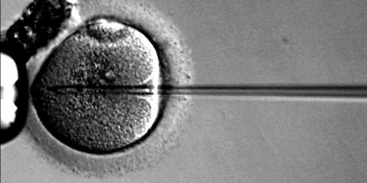 El padre de la Fecundación In Vitro gana el Nobel de Medicina