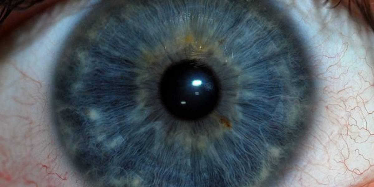 Optimizan sistema de reconocimiento del iris en movimiento