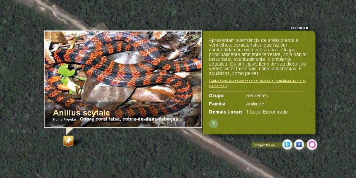 Mapa de Google con la flora y fauna del Amazonas