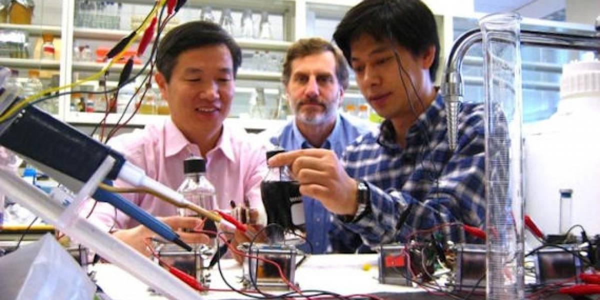 Fabricación de biocombustibles con bacterias y electricidad