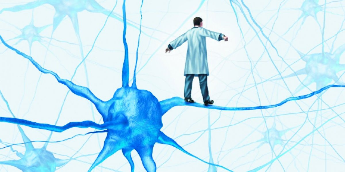 """Una """"reserva"""" de neuronas para luchar contra la vejez"""
