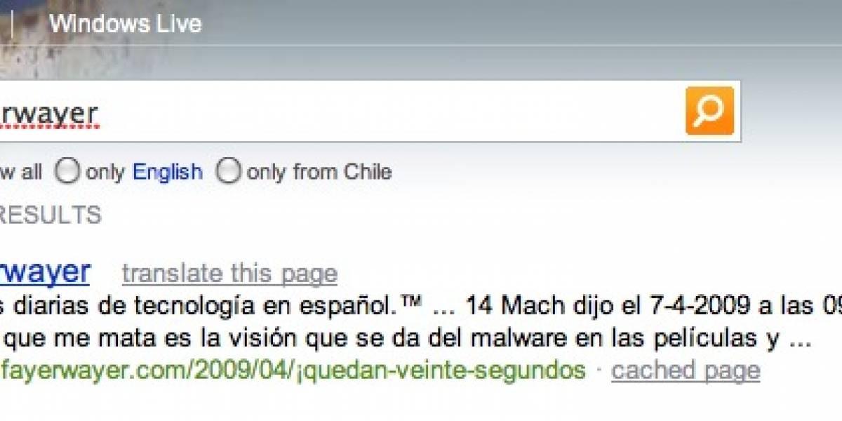 Bing abre sus puertas