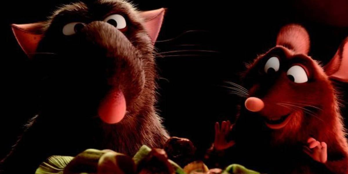 Experimento demuestra que las ratas sienten empatía y ayudan a sus amigas atrapadas