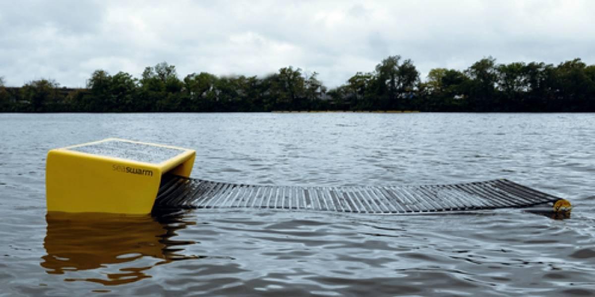 Seaswarm: El ejército de robots que podría limpiar el Golfo de México en un mes