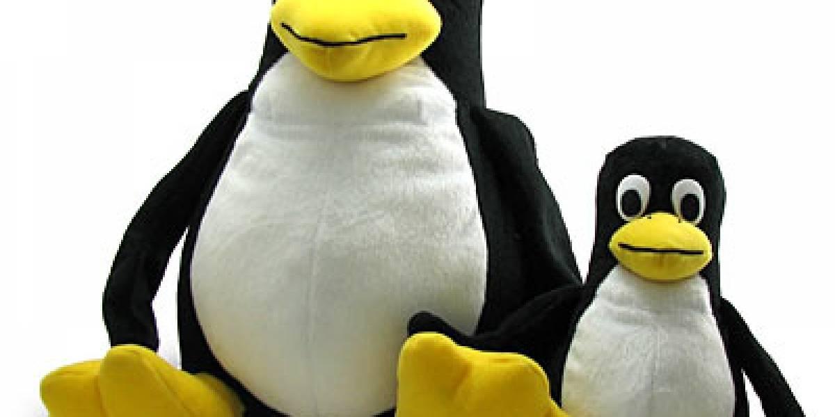 Linux Kernel 2.6.34 ya disponible