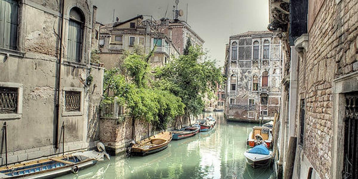 Venecia obtendrá el 50% de su energía eléctrica de las algas