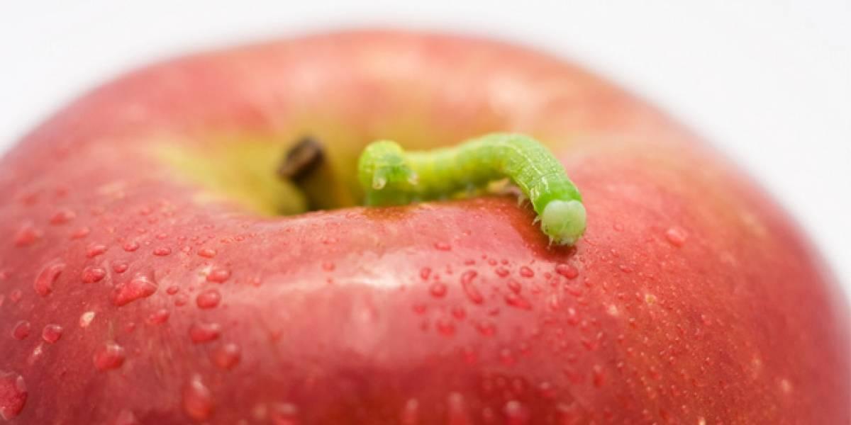 Apple decepciona en su participación en la conferencia Black Hat
