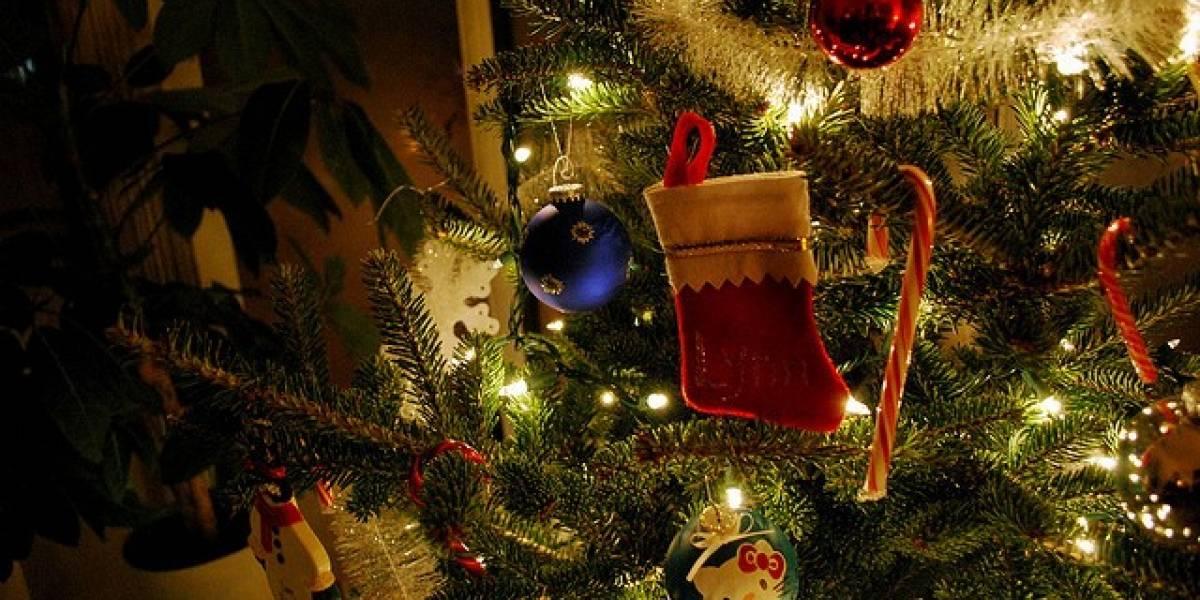 Feliz Navidad y Próspero Año Nuevo les desea Niubie