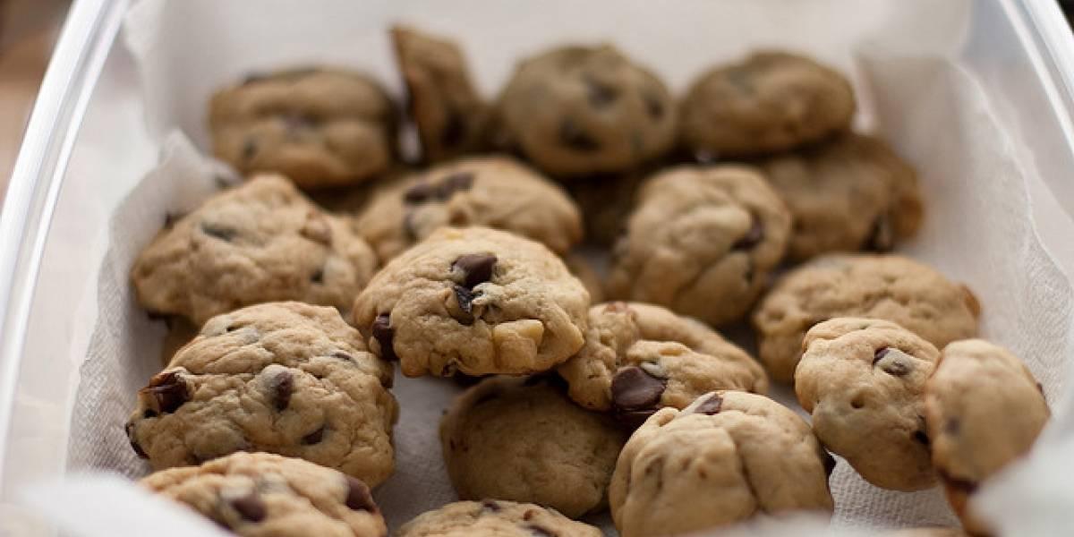 Adobe por fin creará una forma fácil de manejar las cookies de Flash