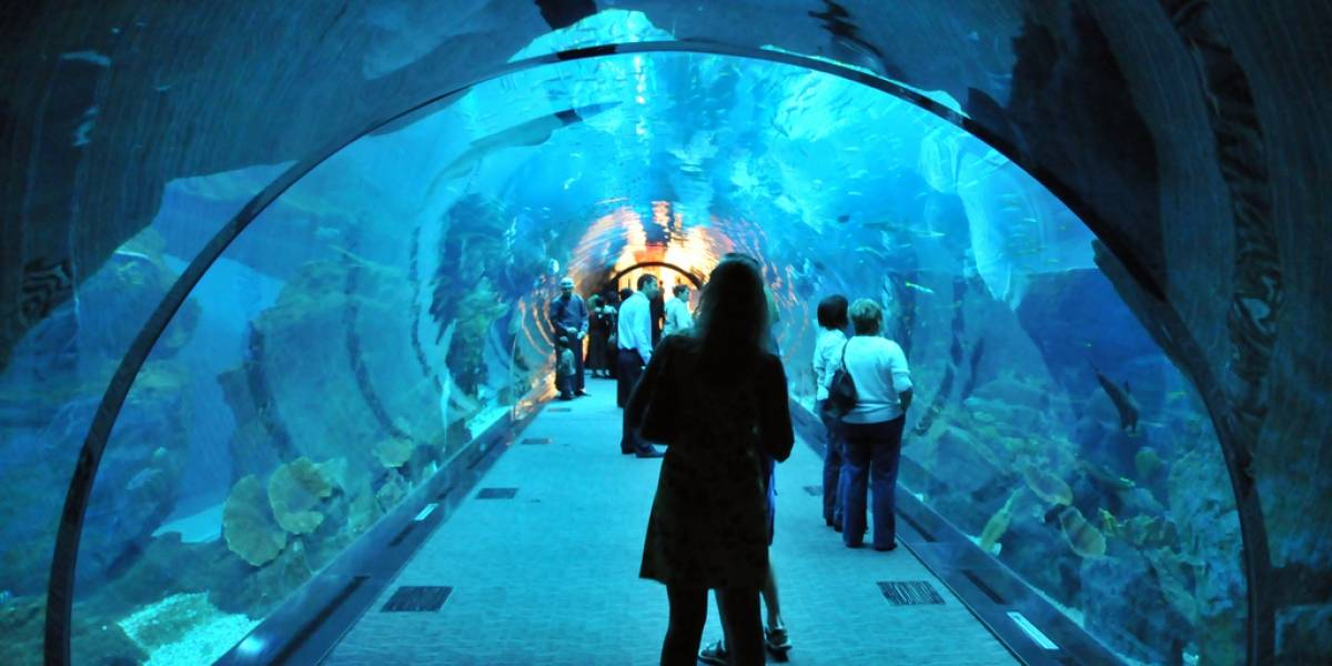 Cierra temporalmente el acuario más grande del mundo por una grieta en su estructura