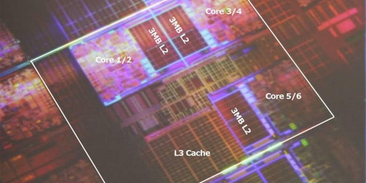 Procesador hexa-core Intel Dunnington fotografiado