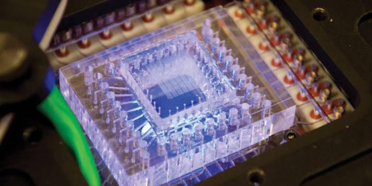 Desarrollan un chip para buscar ADN marciano