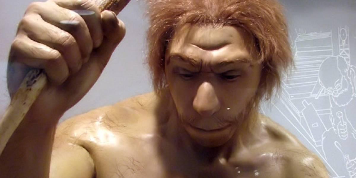 Estudio del genoma Neanderthal esclarece parte de la evolución humana