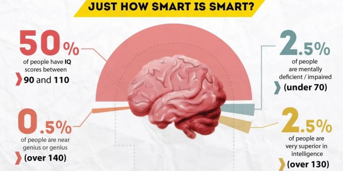Quiénes son las diez personas más inteligentes del mundo