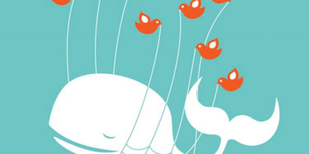 Twitter de nuevo con problemas técnicos: No pone nuevas actualizaciones