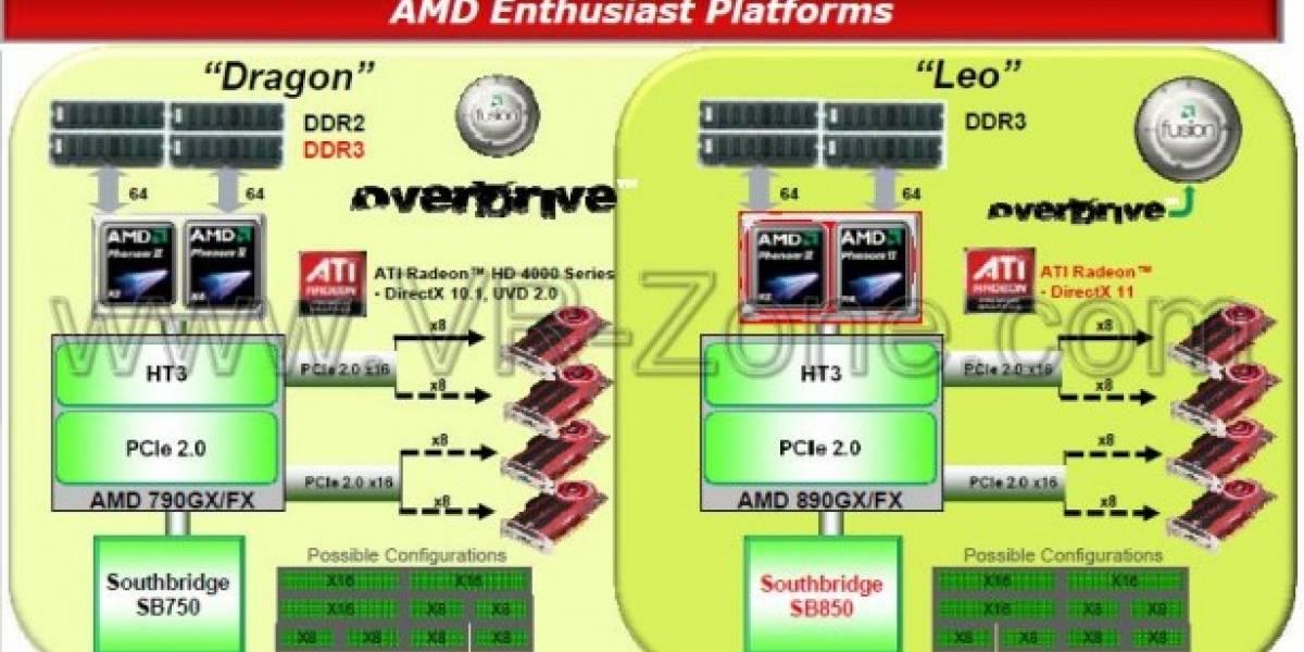 AMD planea su transición de Dragon a Leo