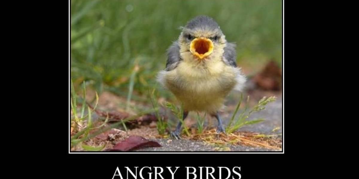 350 millones de descargas en total para Angry Birds