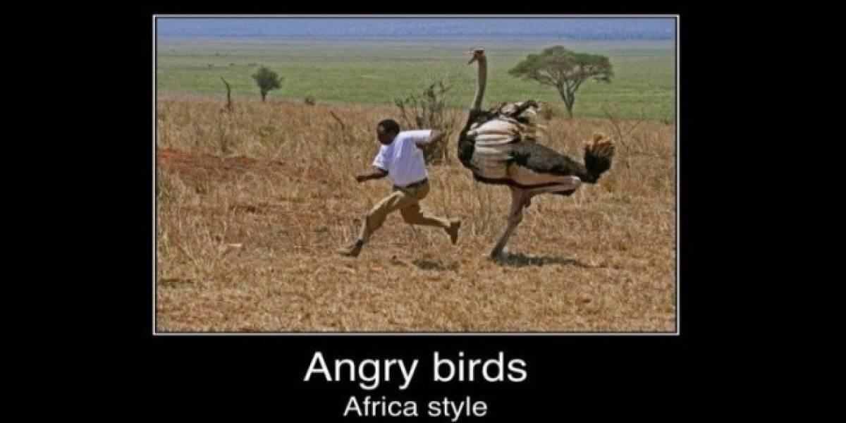 Más de 6 millones de descargas de Angry Birds en Navidad