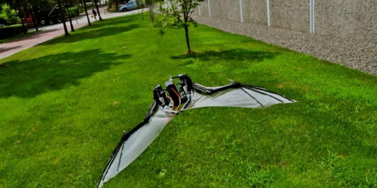 BaTboT: El Drone volador que imita el vuelo del murciélago