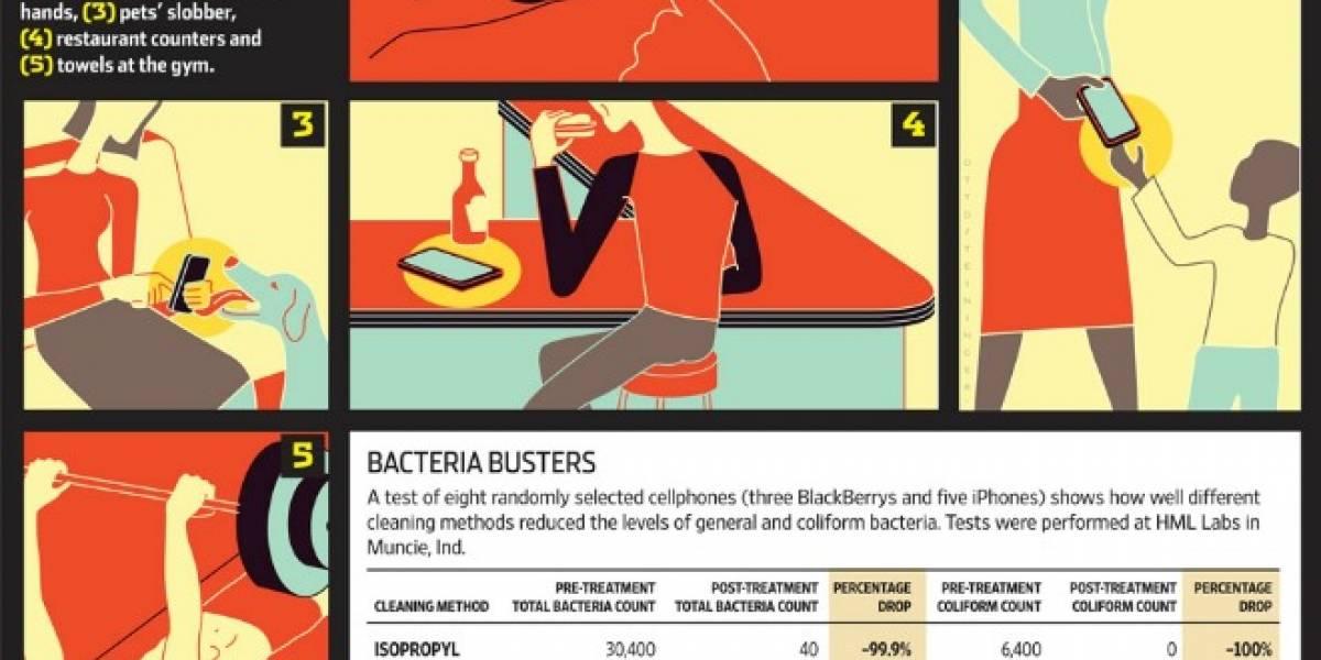 Teléfonos celulares comparten fotos y también bacterias