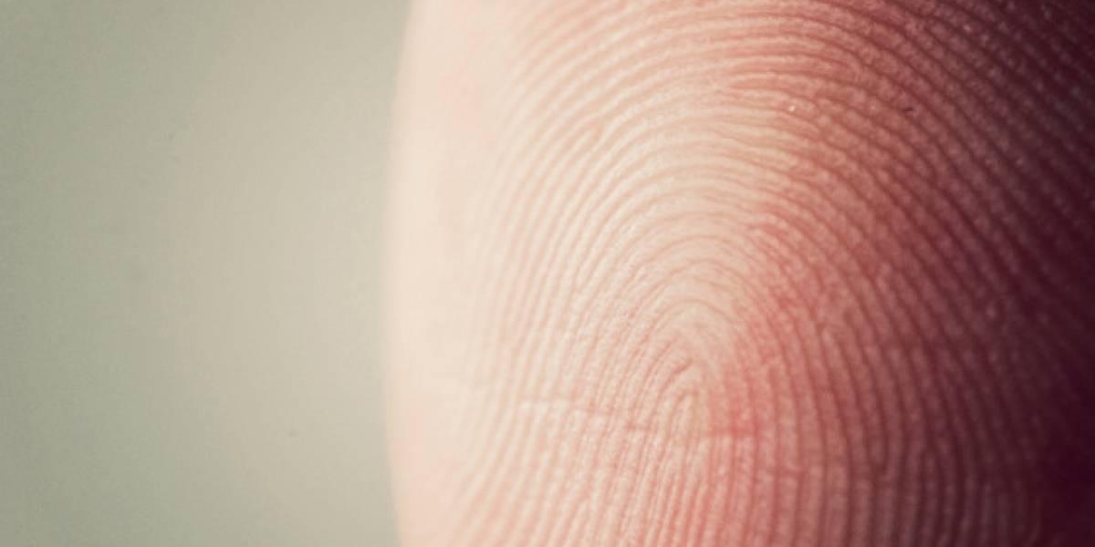 Inventan un escáner de huellas digitales que distingue entre vivos y muertos