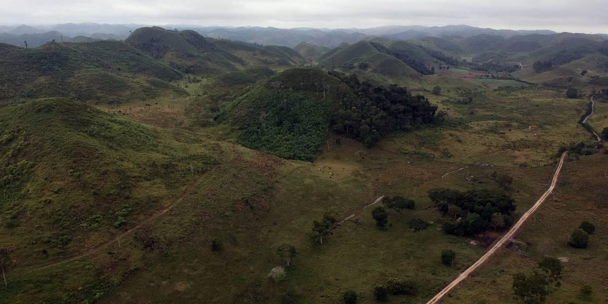 Guatemala busca frenar deforestación en reserva maya con tecnología satelital