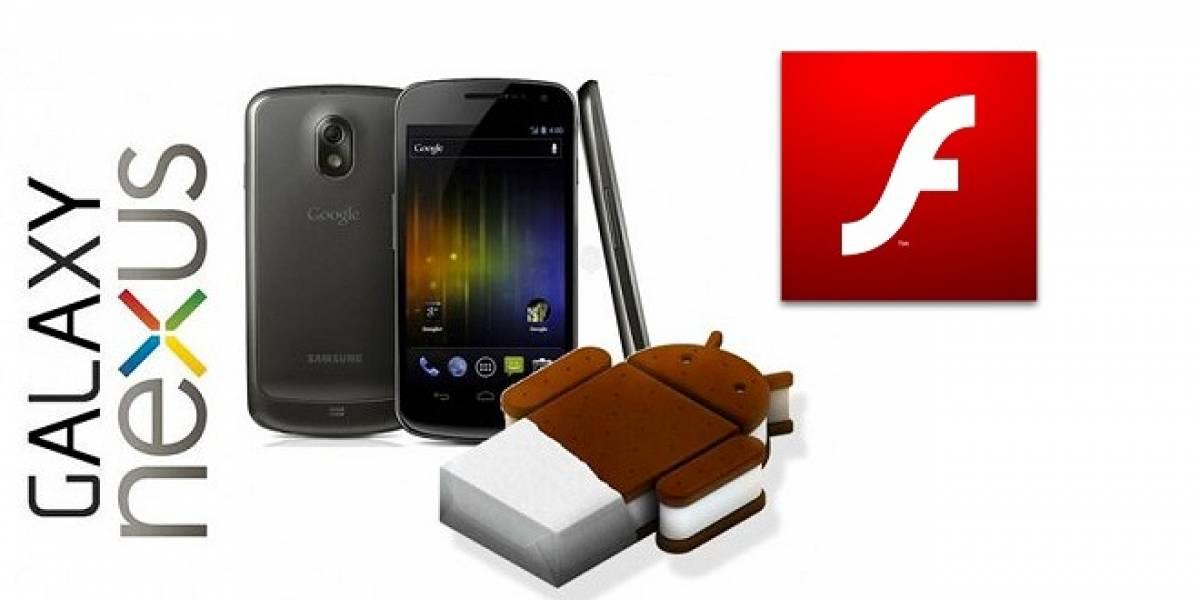 Adobe Flash Player 11.1 llegaría en diciembre para el Galaxy Nexus