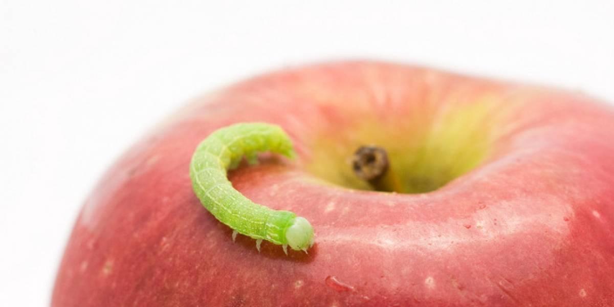 """Apple está """"10 años más atrás"""" que Microsoft en seguridad, según Kaspersky"""