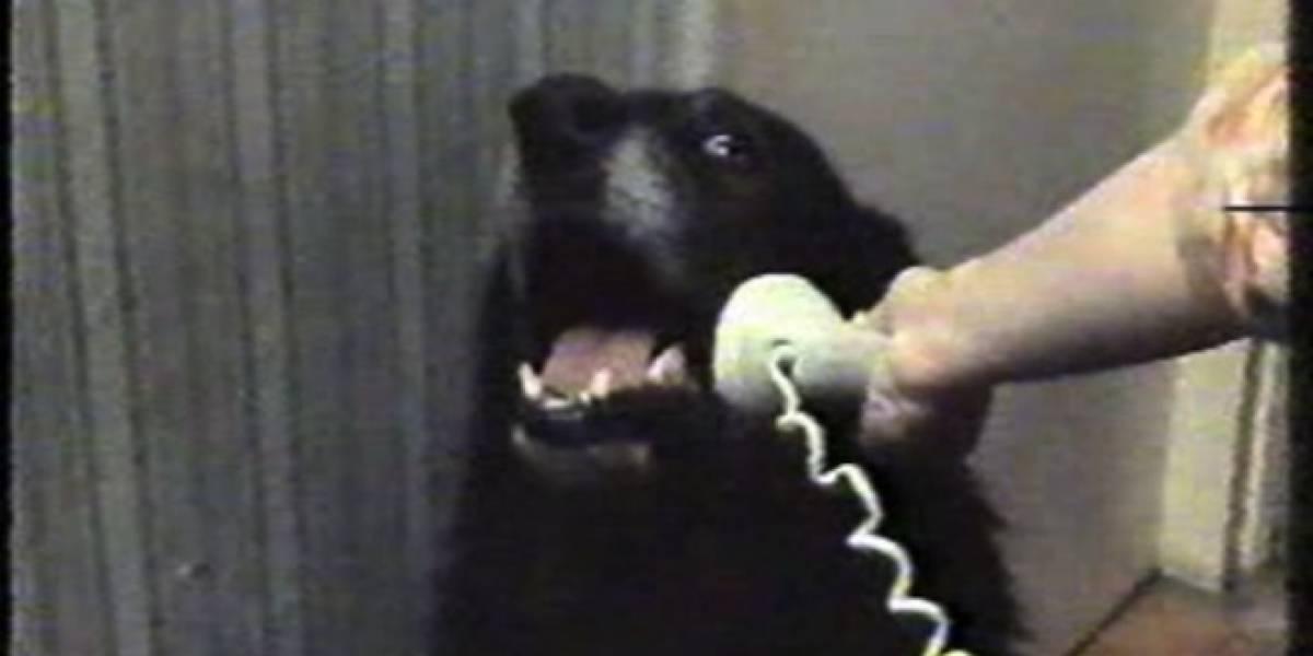 Chile: Cambiará sutilmente la forma de llamar a teléfonos de red fija