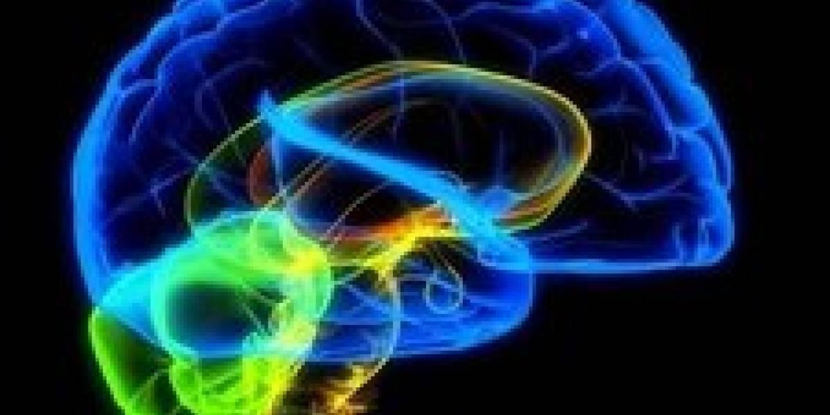 En 10 años podría haber un cerebro artificial