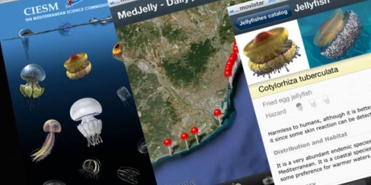 España: Una app iOS alerta de la presencia de medusas en playas de Barcelona