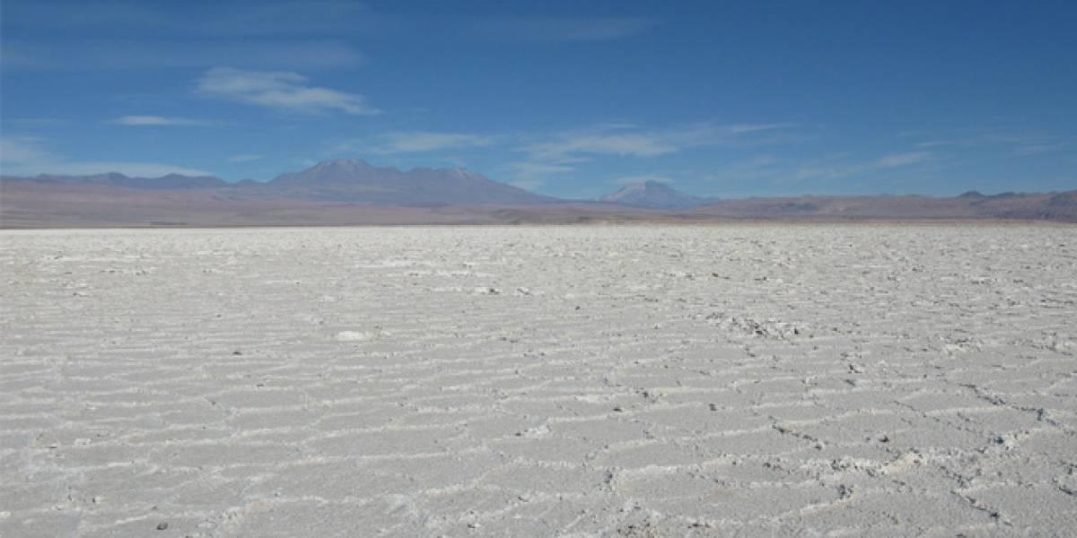 Chile: Gobierno licitará la extracción de litio a privados
