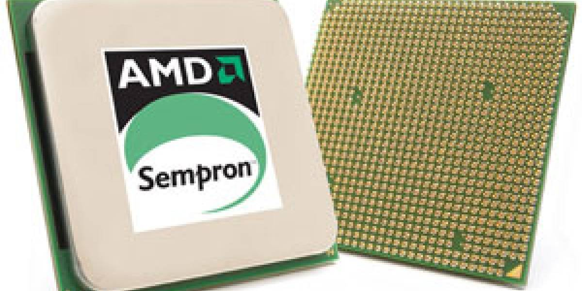 AMD en Chile y arraun-de-worlk