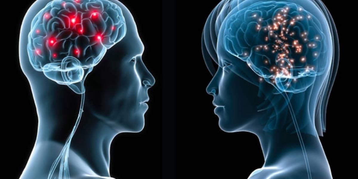 Ver porno adormecería el campo visual del cerebro