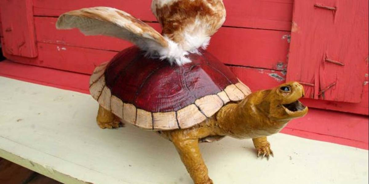 Fan art al extremo: Taxidermia de un Koopa Paratroopa
