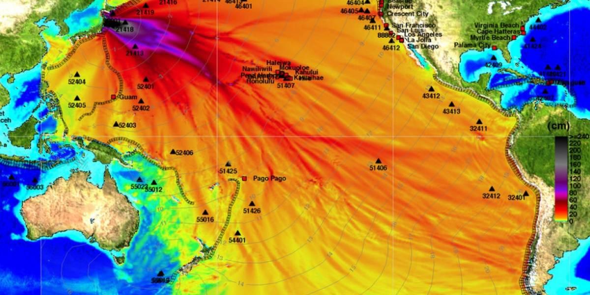 Así se mueve el océano después del terremoto en Japón