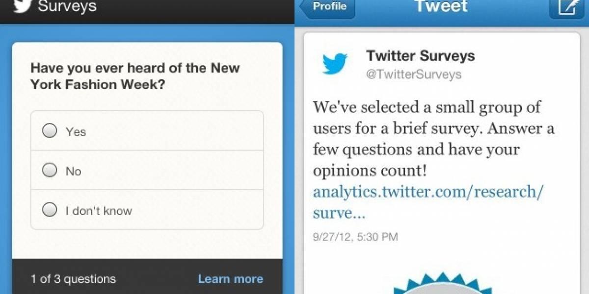 Twitter permitirá a avisadores realizar encuestas directamente en el timeline