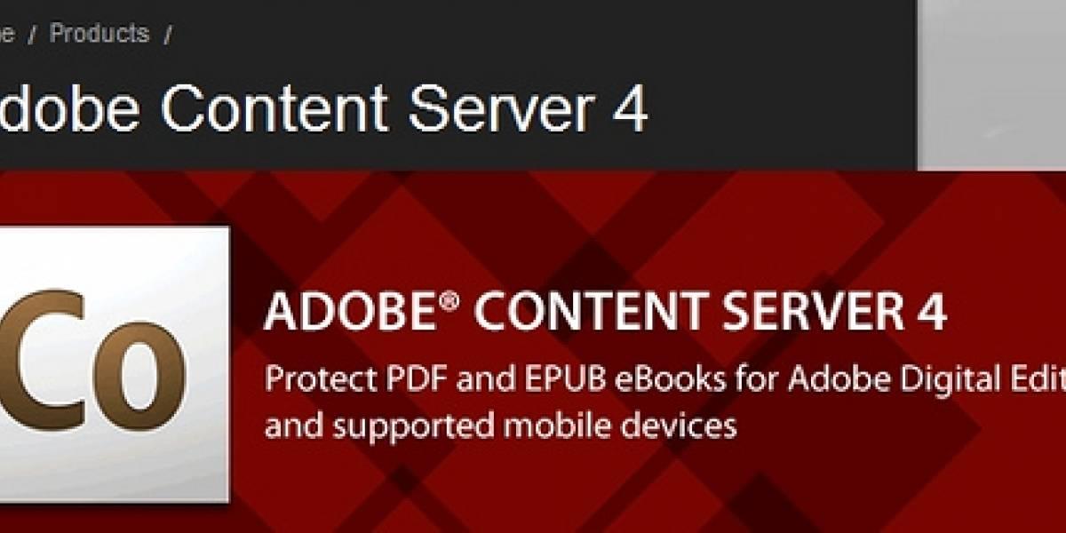 Adobe es el gran rival del Kindle de Amazon