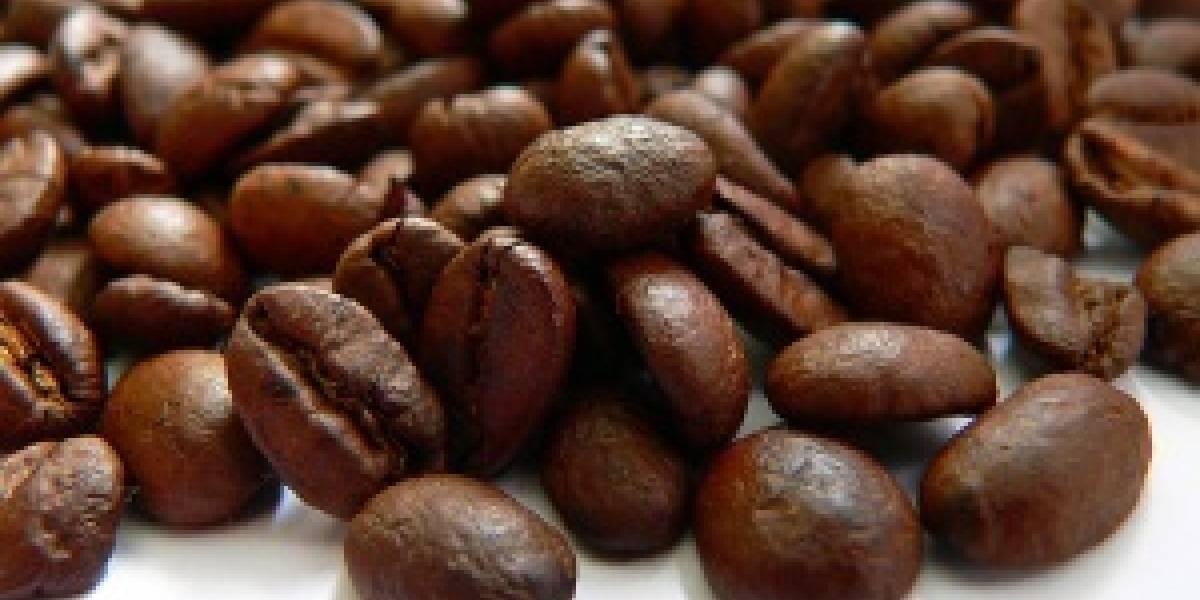 Caffeine: La nueva generación del buscador de Google