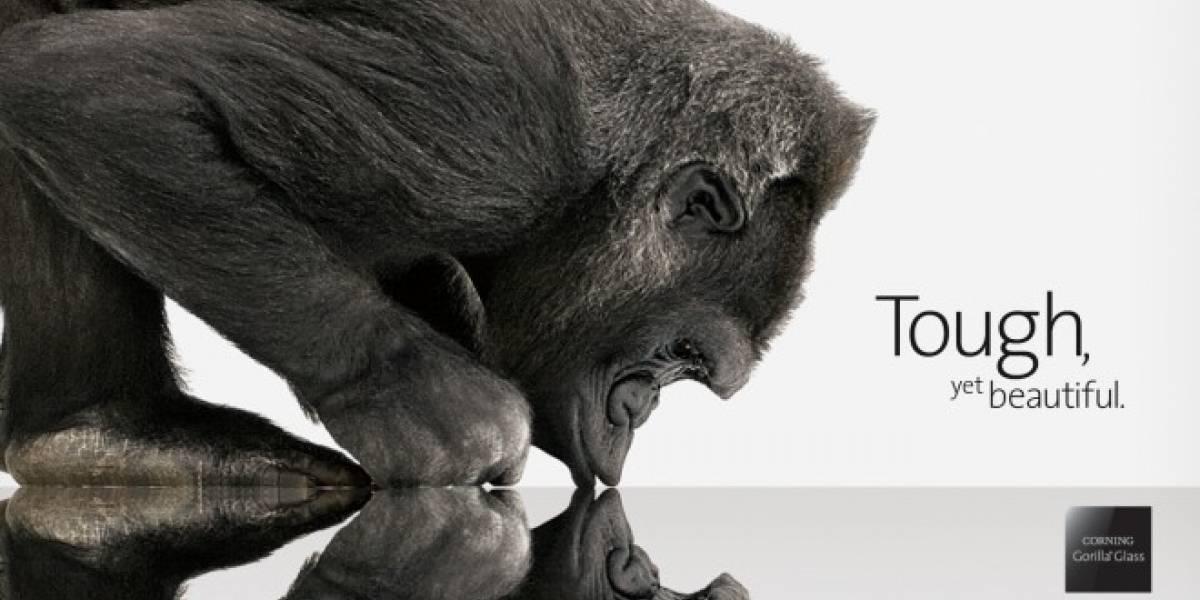 La evolución de Gorilla Glass se encargará de los gérmenes en nuestro móvil